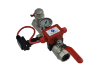 Monitored Dual Port Fire Sprinkler Valve Set